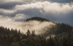 Mountain hills covered with fog Royalty Free Stock Images