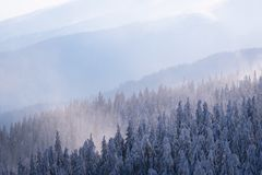 Mountain hills in the fog in winter stock image