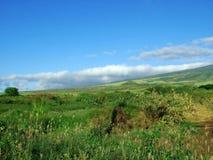 Mountain Hillside Stock Image