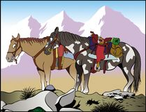 Mountain horses stock images
