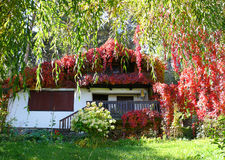 Mountain house. In Rodopi mountain in Bulgaria stock images