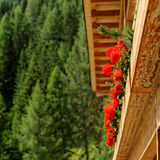 Mountain hut. A mountain hut at Dolomites with pelargonium flowers stock photo