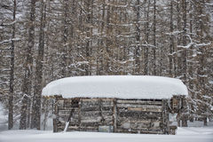Mountain hut under the snow Stock Image