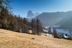 Mountain hut in valley of green forests and snowy peaks in winte Stock Photo