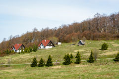 Mountain hut and villas on a hill with pine trees in the foreground and leafless trees in the background royalty free stock image