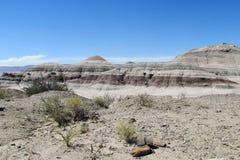 Mountain in Ischigualasto desert Stock Photography