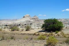 Mountain in Ischigualasto, Valle de la Luna Stock Photography