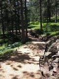 Mountain Jogging Path Royalty Free Stock Photography