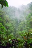 Mountain jungle. Misty mountain jungle in Costa Rica Stock Images