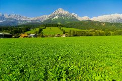 Mountain from Kaisergebirge. Mountain green field leading up to Kaisergebirge Royalty Free Stock Photos