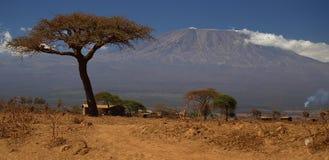 Mountain Kilimanjaro. Sees panning of the mountain kilimanjaro Stock Photos