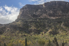 Mountain. @ La Paz Baja California Sur Royalty Free Stock Image