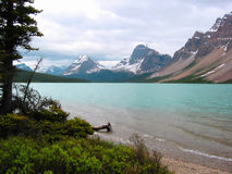 Mountain Lake. This is a picture of Bow Lake, around the Columbia Ice Fields Stock Images
