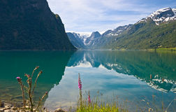 Mountain lake. Olden lake under Briksdal Glacier, Norway Stock Photography
