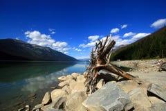 Mountain lake. In the rocky mountains, canada Royalty Free Stock Photos