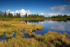Mountain lake. And marsh ni the hills Stock Images