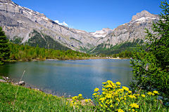 Mountain lake. A beautiful mountain lake at Derborence, Swiss Alps Stock Photo