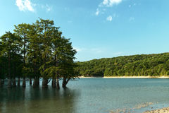 Mountain lake. With cypress trees Stock Image
