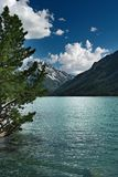Mountain lake. Sunny day on the mountain lake Royalty Free Stock Photo