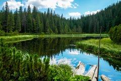 Mountain Lake Lizenzfreie Stockfotos