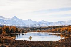 Mountain lake. The Russian Federation. Western Siberia. Mountain Altai Stock Photo