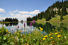 Mountain Lake in Austria Stock Photos
