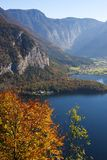 Mountain lake and autumn leaves Stock Photography