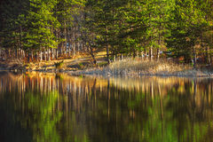 Mountain lake, autumn shot Royalty Free Stock Photos