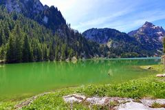 Mountain Lake. A beautiful mountain lake surrounded by the forrest Royalty Free Stock Image