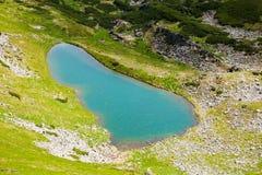 Mountain Lake in Carpathians Royalty Free Stock Image