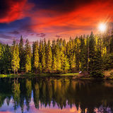 Mountain lake in coniferous forest on red sunset Stock Images
