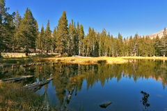 The mountain lake in the early morn royalty free stock photos