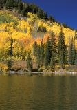 Mountain lake in fall. Mountain lake and foliage colours stock photography