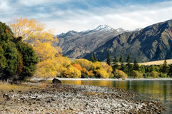 Mountain Lake in Fall royalty free stock image
