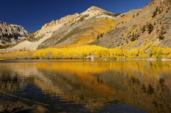 Mountain Lake, Fall Colors royalty free stock photography