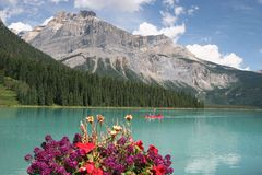 Mountain lake with flowers. Flower pot with a mountain lake on a background Stock Images