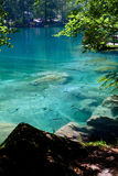 Mountain lake in forest. Beautiful transparent mountain lake with lot of fish swimming in it stock images