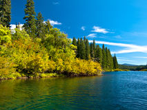Mountain lake in forest Royalty Free Stock Photos