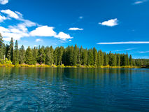 Mountain lake in forest Stock Images