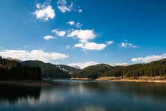 Mountain lake in forest Stock Image