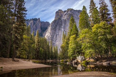 Mountain lake and forest Stock Photography