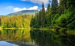Mountain lake among the forest Stock Photos