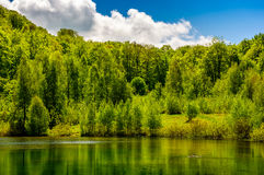 Mountain lake among the forest Royalty Free Stock Photos