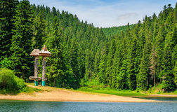 Mountain lake among the forest in National Park Synevir, Ukraine stock photography