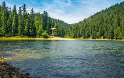 Mountain lake among the forest in National Park Synevir, Ukraine Royalty Free Stock Images