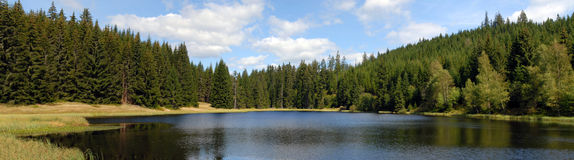Mountain lake and forest panorama Royalty Free Stock Photos