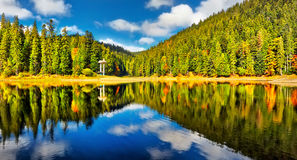 Mountain lake in the forest Royalty Free Stock Image