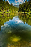 Mountain Lake. A lake full of tadpoles in Slovakian mountains royalty free stock images