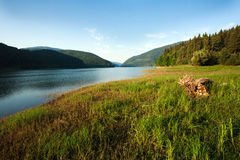 Mountain lake in green forest on blue sky background Stock Photos