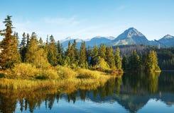Mountain lake in High Tatra stock image